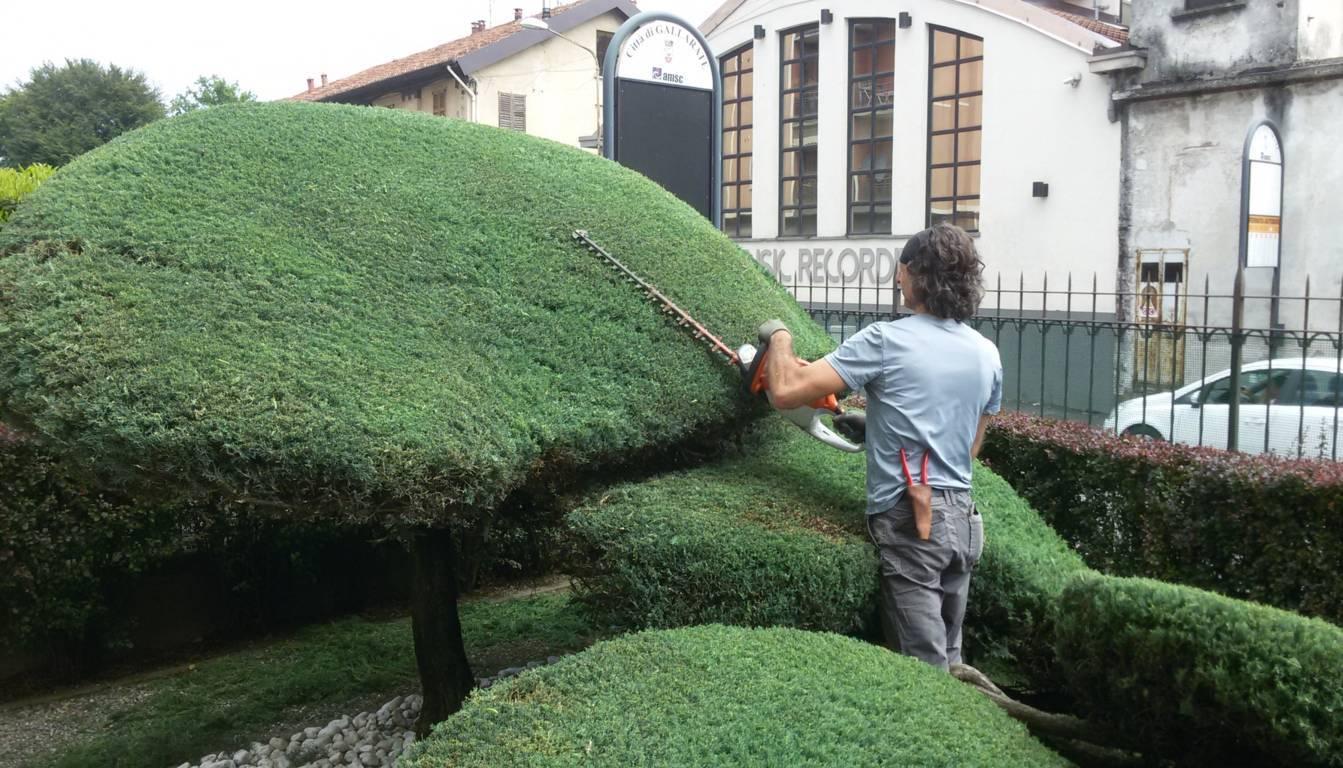 Manutenzione giardini e terrazzi Milano, Como Varese | Ikebana Fiori ...