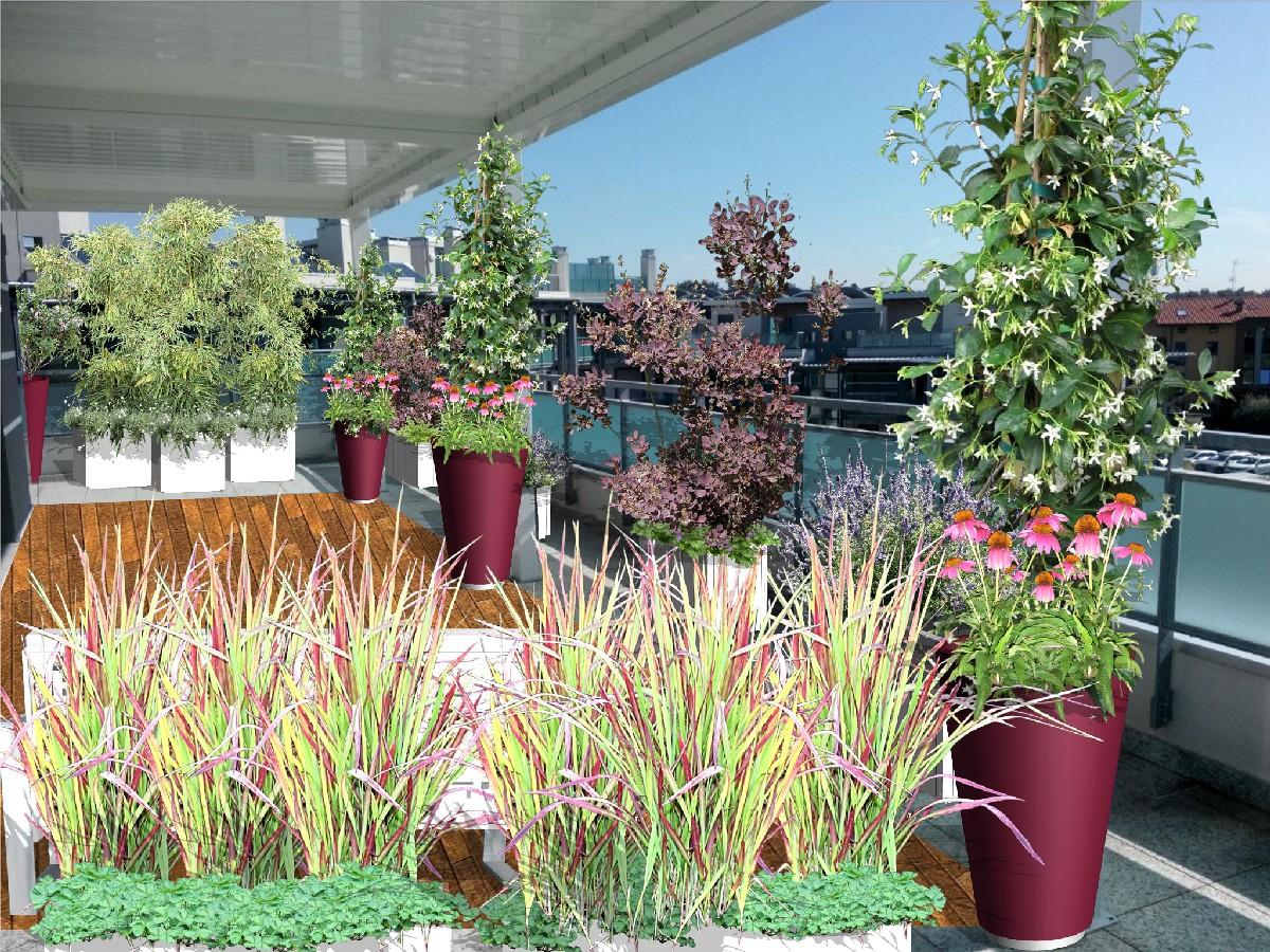 progettazione giardini e terrazzi milano como varese