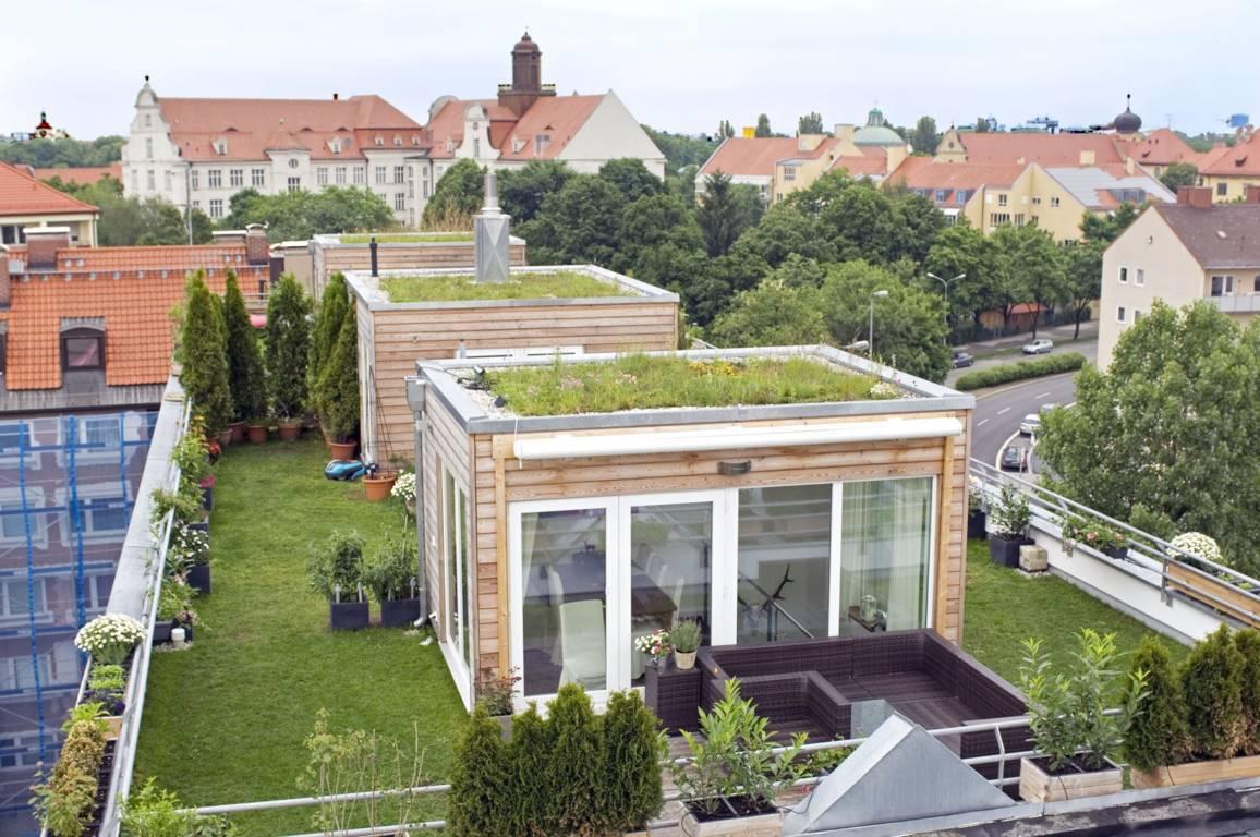 Realizzazione giardini pensili a Milano, Como e Varese   Ikebana ...